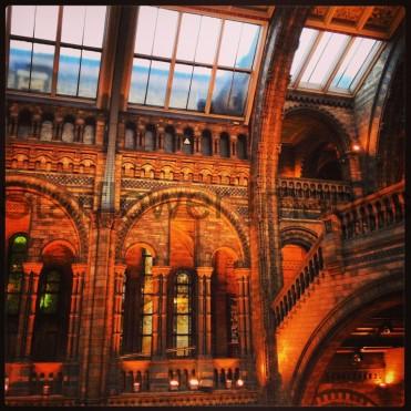 Natural History Museum, London 005