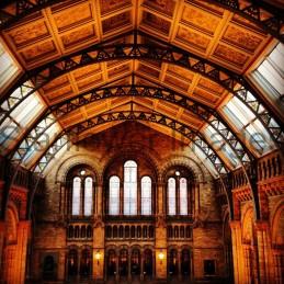 Natural History Museum, London 009