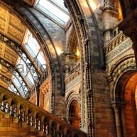 Natural History Museum, London 012