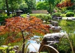 Kyoto Gardens IMG_2525_1024