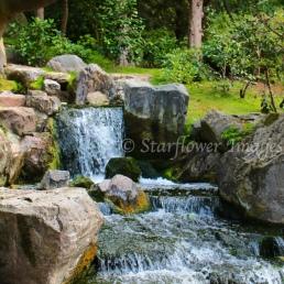 Kyoto Gardens IMG_2528_1024