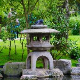 Kyoto Gardens IMG_2534_1024