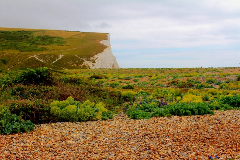 Seven Sisters2336_1024