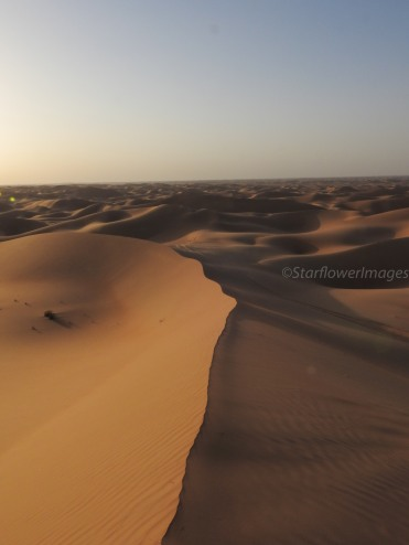 Desert of the UAE